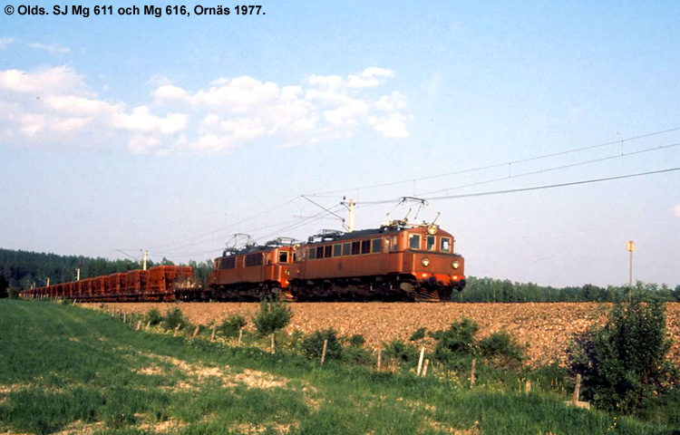 SJ Mg 611