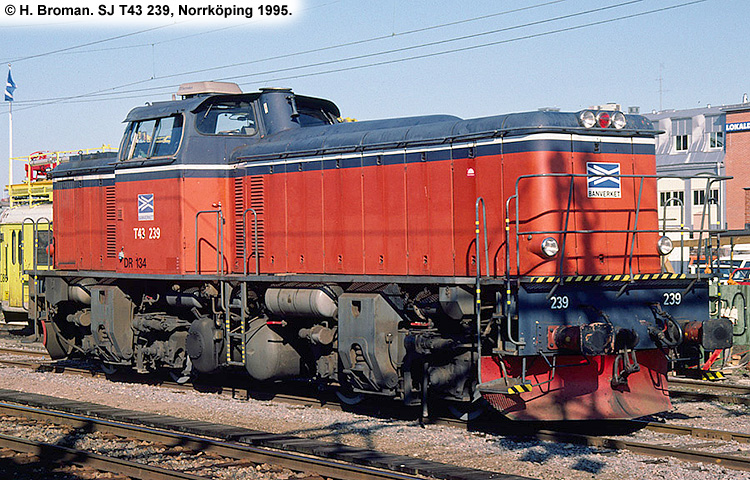 SJ T43 239
