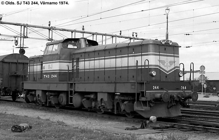 SJ T43 244