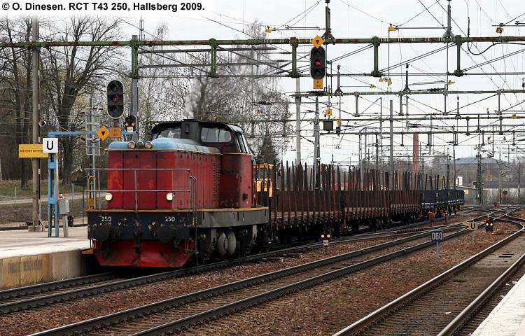 RCT T43 250